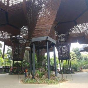 Jardin Botanico Joaquín Antonio Uribe Medellin