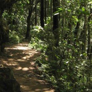 Reserva Natural del Río Claro/Senderismo